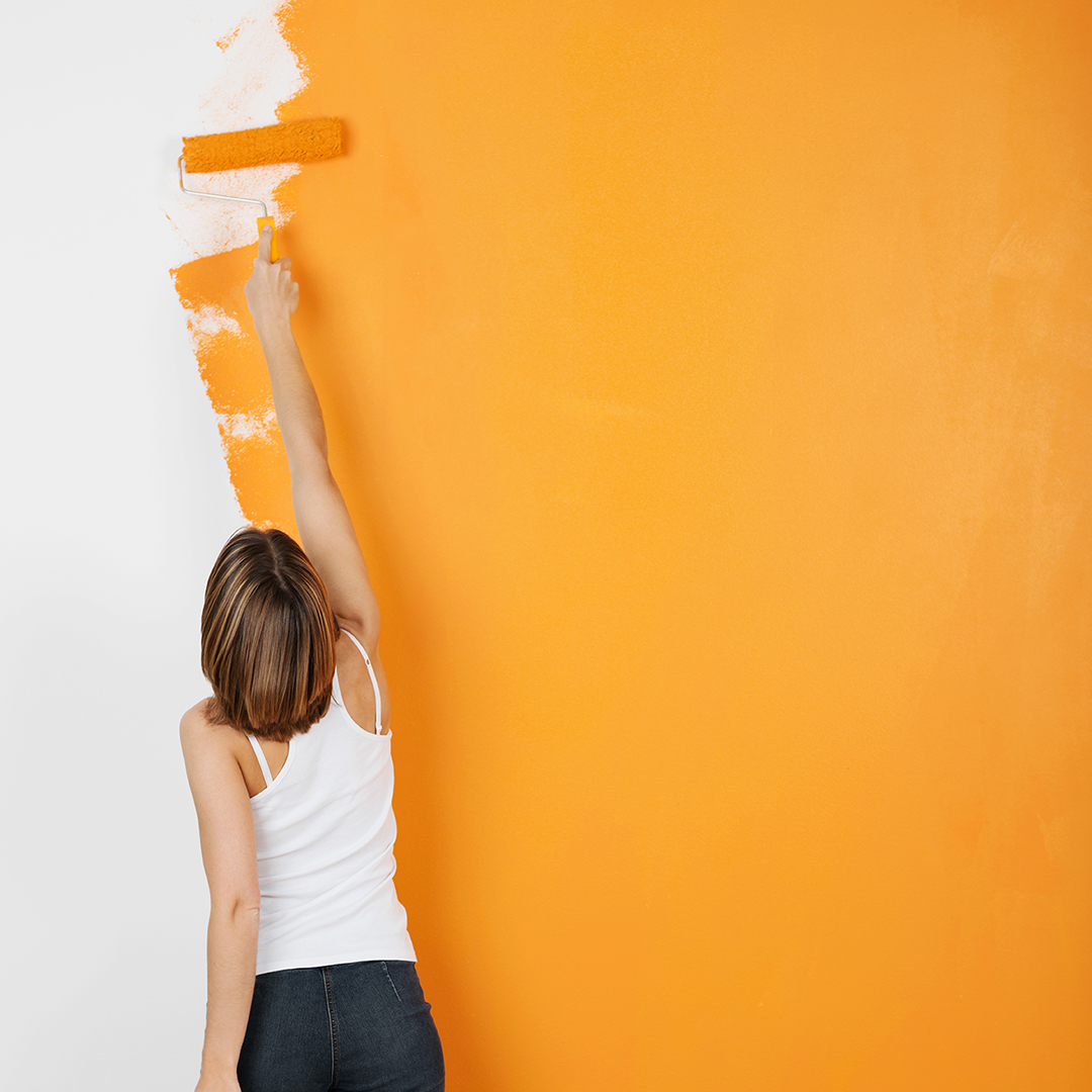 Pittura traspirante o pittura lavabile / Nuovo Colorificio Zagato Rovigo